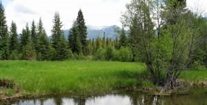 Swan River Oxbow Preserve