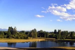 Pine Grove Pond