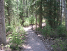 Whitefish Lake Institute Intrepretive Trail Photo